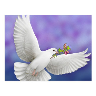Carte de colombe de paix de vol