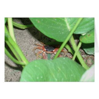 Carte de dissimulation de crabe