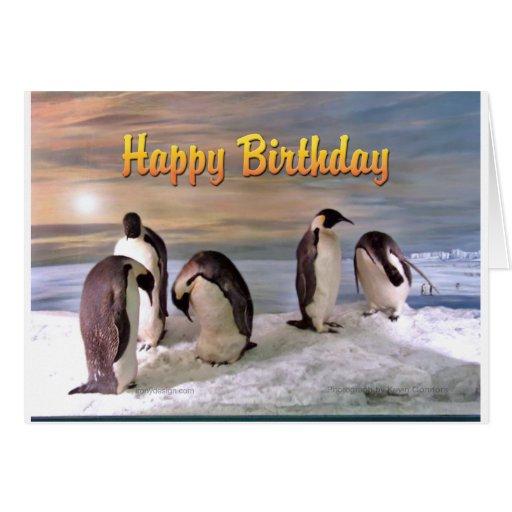Carte de joyeux anniversaire de photo de pingouin