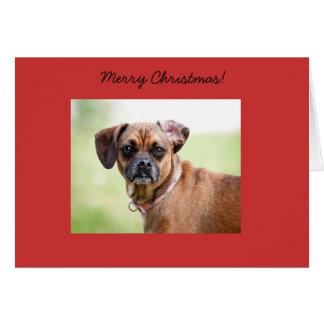 Carte de Joyeux Noël de Puggle