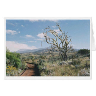 Carte de Kilimanjaro Moorlands