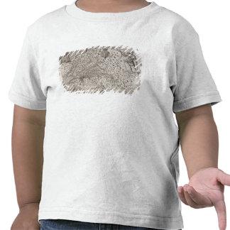 Carte de la Virginie, découverte et décrite par T-shirt