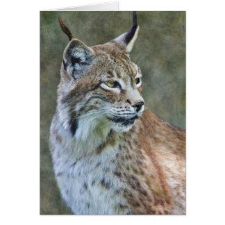 Carte de Lynx de Sibérien