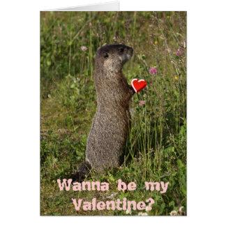 Carte de Marmot Valentine