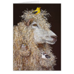 Carte de Nesters de laine