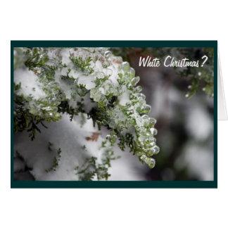 Carte de Noël à feuillage persistant glaciale