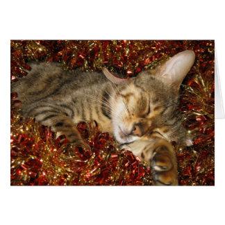 Carte de Noël - chat du Bengale