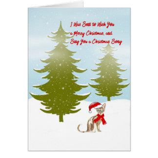 Carte de Noël comme indiqué par un chat
