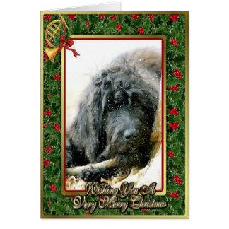 Carte de Noël de blanc de chien de Labradoodle