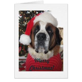 Carte de Noël de chien de Père Noël St Bernard