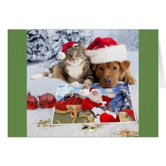 Carte de Noël de chien et de chat avec Père Noël