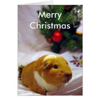 Carte de Noël de cobaye