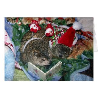 Carte de Noël de Groundhog