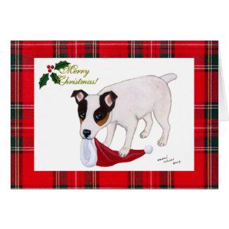 Carte de Noël de Jack Russell Terrier