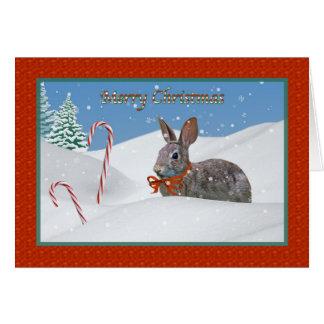 Carte de Noël de lapin et de sucre de canne