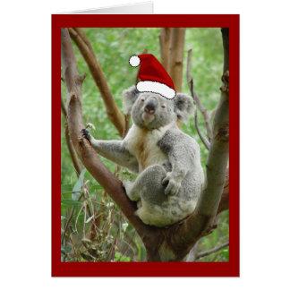 Carte de Noël de Père Noël de koala