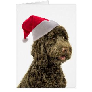 Carte de Noël de Père Noël Labradoodle