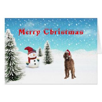Carte de Noël de poseur irlandais