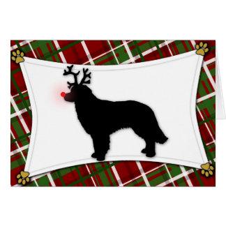 Carte de Noël de renne de Hovawart
