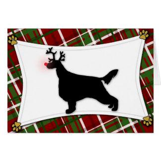 Carte de Noël de renne de poseur irlandais