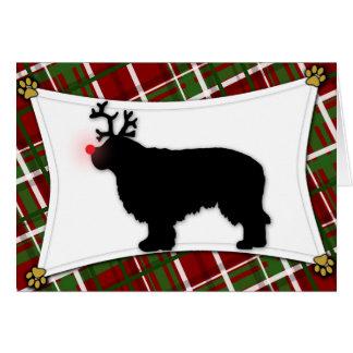 Carte de Noël de renne d'épagneul de Clumber