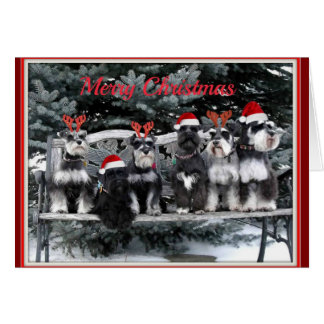 Carte de Noël de Schnauzer