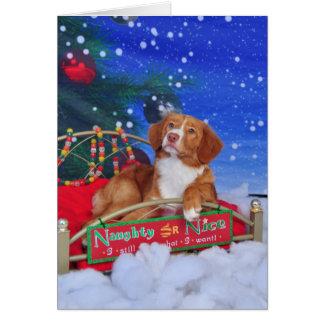 Carte de Noël de tintement de chien d'arrêt de