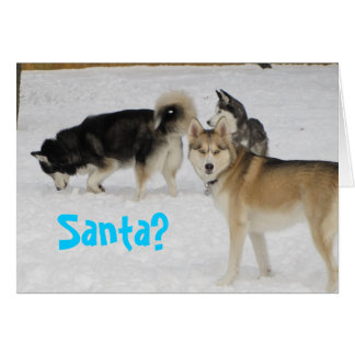 Carte de Noël de vacances de chien de traîneau