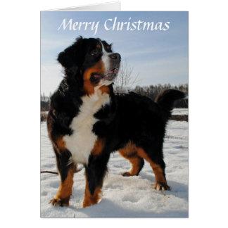 Carte de Noël de vacances de neige de chien de