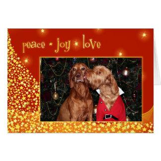 Carte de Noël de Vizsla de Hongrois 012