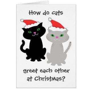 Carte de Noël drôle de chats