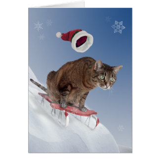 Carte de Noël Sledding de chat