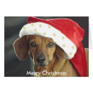 Carte de Noël - teckel de Père Noël