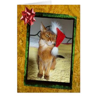 Carte de Noël vilaine de Kitty