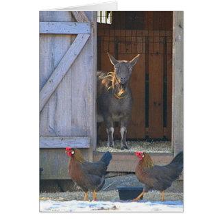 Carte de note de basse cour de chèvre et de poulet