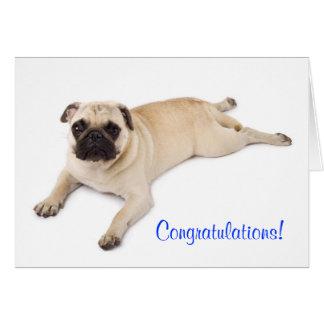 Carte de note de blanc de carlin de félicitations