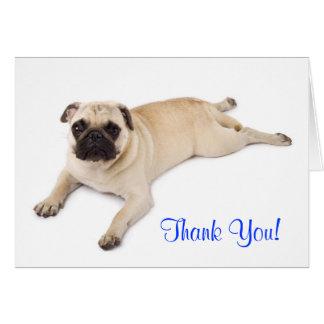 Carte de note de blanc de carlin de Merci