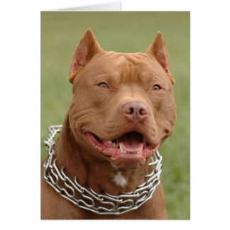 Carte de note de blanc de chiot de Pitbull