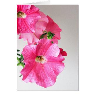 Carte de note de cascade rose de pétunias