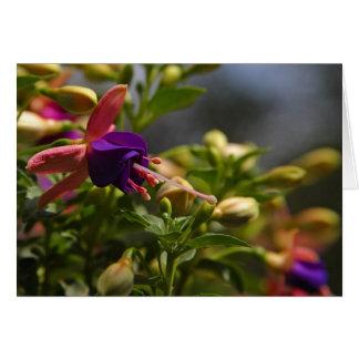 carte de note de fleur de fuschias