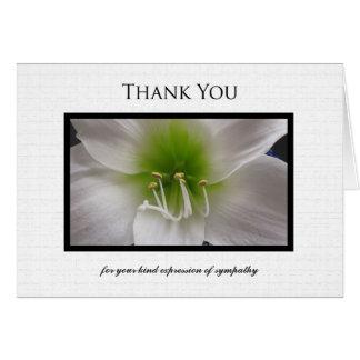 Carte de note de Merci de sympathie - amaryllis
