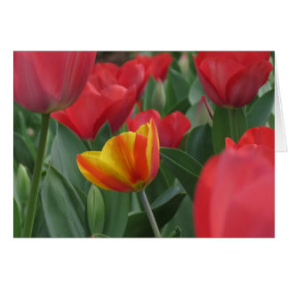 Carte de note de tulipes de ressort