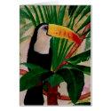 Carte Oiseau exotique Toucan