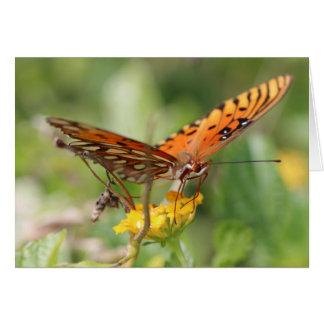 Carte de note, papillon sur la fleur jaune - blanc