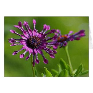 carte de note pourpre de fleur