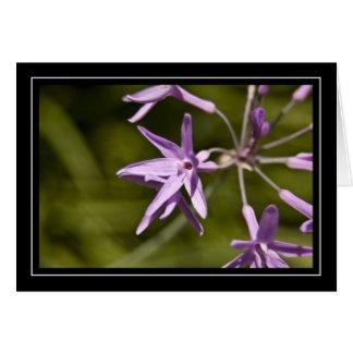 Carte de note pourpre de fleur sauvage