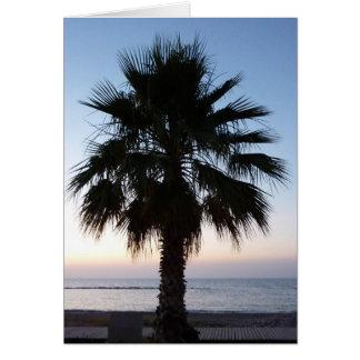 Carte de palmier