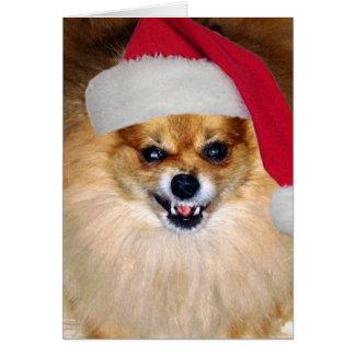 """Carte de Pomeranian Père Noël de """"Joyeux Noël aboy"""