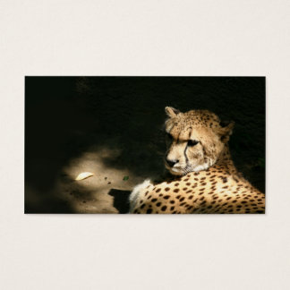 Carte de profil de guépard
