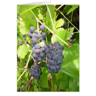 Carte de raisins